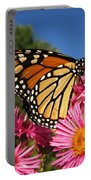 Monarch On Pink Asters Portable Battery Charger