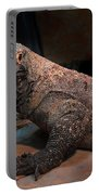 Monitor Lizard Portable Battery Charger
