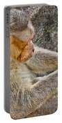 Monkey Playing With Tail Portable Battery Charger