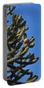 Monkey Puzzle Tree A Portable Battery Charger