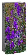 Monkshood In Rocky Harbour-nl Portable Battery Charger