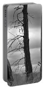 Monochrome Trees Portable Battery Charger