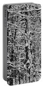 Monochrome Winter Wilderness Portable Battery Charger