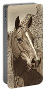 Montana Horse Portrait In Sepia Portable Battery Charger