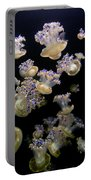 Monterey Aquarium Jellyfish Portable Battery Charger