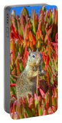 Monterey Squirrel Portable Battery Charger