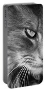 Moody Cat Portable Battery Charger