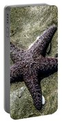 Moody Starfish I Portable Battery Charger