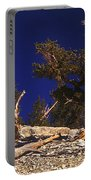 Moon And Bristlecone Pines Portable Battery Charger