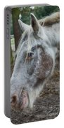 Moon Eyed Horse Portable Battery Charger