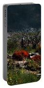 Moonlit Hillside In Africa Portable Battery Charger