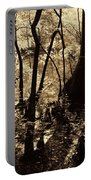 Moores Creek Swamp Portable Battery Charger