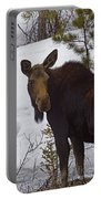 Moose   #1612 Portable Battery Charger