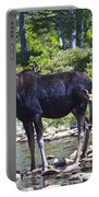 Moose And Baby 4 Portable Battery Charger