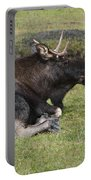 Moose At Rest Portable Battery Charger