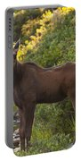 Moose Baby Sniffing Morning Air Portable Battery Charger