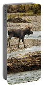 Moose Crossing River No. 1 - Grand Tetons Portable Battery Charger