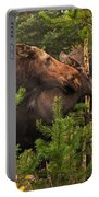 Moose Family At The Shredded Pine Portable Battery Charger