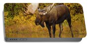 Moose In Glacial Kettle Pond  Portable Battery Charger