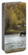 Moose Mid-stream - Grand Tetons Portable Battery Charger