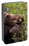 Moose Munch Portable Battery Charger