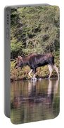 Moose_0587 Portable Battery Charger