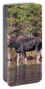 Moose_0591b Portable Battery Charger