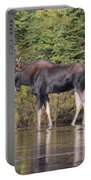 Moose_0596 Portable Battery Charger