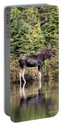 Moose_0609 Portable Battery Charger