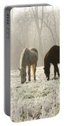 Morning Frost Portable Battery Charger