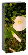 Morning Glory Glow Portable Battery Charger