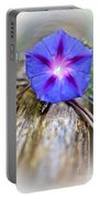 Morning Glory On The Fence Portable Battery Charger