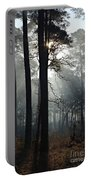 Morning Mist II Portable Battery Charger