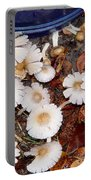 Morning Mushrooms Portable Battery Charger