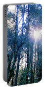 Morning Sun Rays Portable Battery Charger