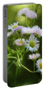 Morning Visions Portable Battery Charger
