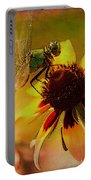 Mosquito Hawk Portable Battery Charger