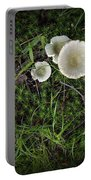Moss And Fungi Portable Battery Charger