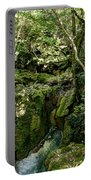Moss And Stones By The Turquoise Forest Pond On A Summer Day No4 Portable Battery Charger
