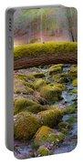 Moss Bridge Portable Battery Charger