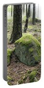 Moss-covered Boulder Portable Battery Charger