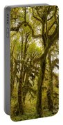 Moss-covered Maple Grove Portable Battery Charger