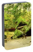 Moss Covered Rocks In Forest, Rocky Portable Battery Charger