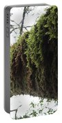 Moss Covered Tree Portable Battery Charger