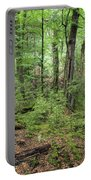 Moss Covered Trees In Forest, Lord Portable Battery Charger