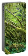 Moss Grows On Vine Maple Trees  Acer Portable Battery Charger