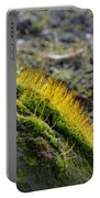 Moss In The Light Portable Battery Charger