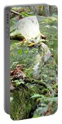Moss Rock 3 Portable Battery Charger