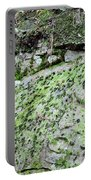 Moss Rock Portable Battery Charger
