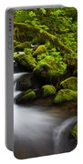 Mossy Arch Cascade Portable Battery Charger by Darren  White
